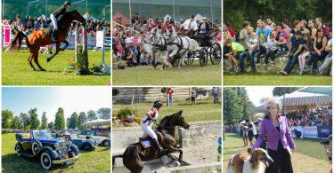 karpatia-horse-show1